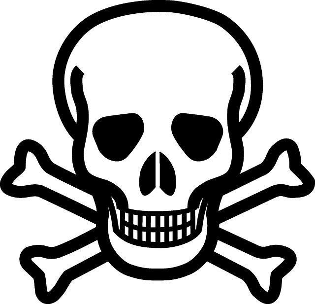 pirátský symbol, lebka se zkříženými hnátami
